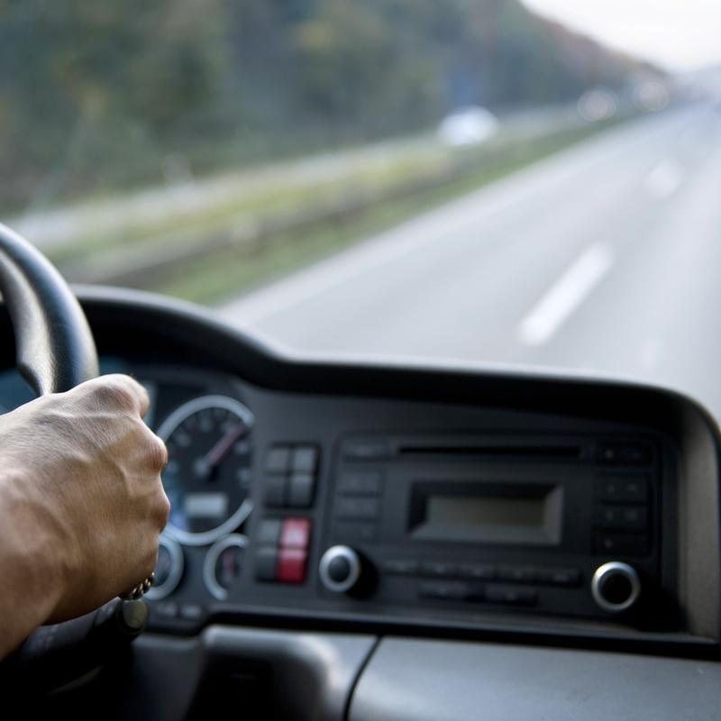 Transporte provincial: Servicios de Distribuciones Nieves