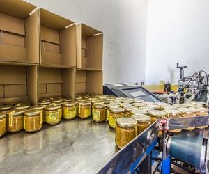Envasado de miel y polen en Extremadura