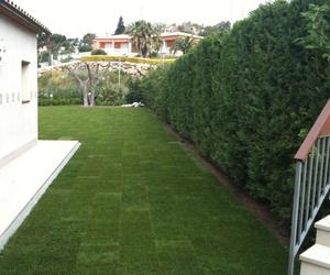 Expertos en construcción de jardines