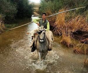 Rutas a caballo en Don Benito, Badajoz