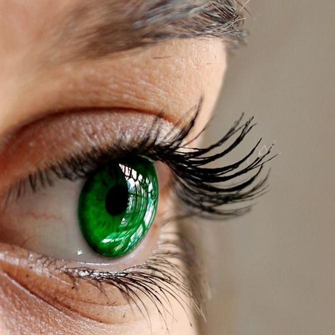 Glaucoma: ¡más vale prevenirlo que curarlo!