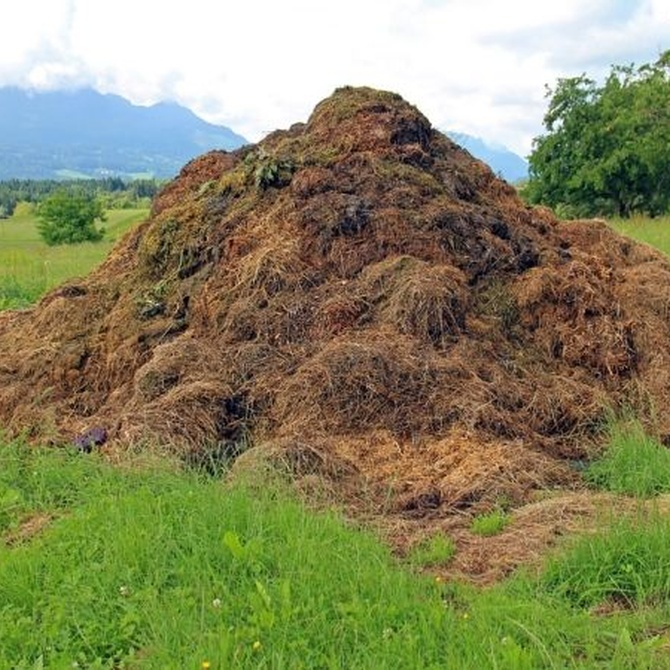 Por qué usar compost