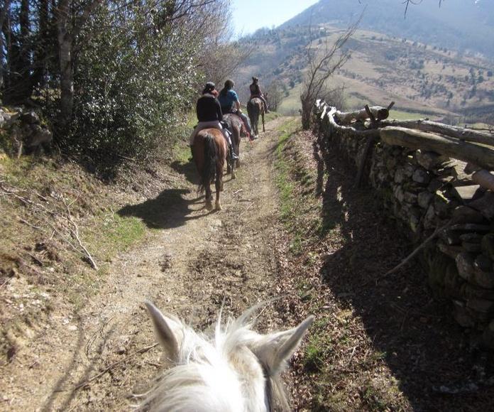 Rutas a caballo: Actividades de El Trasgu La Fronda
