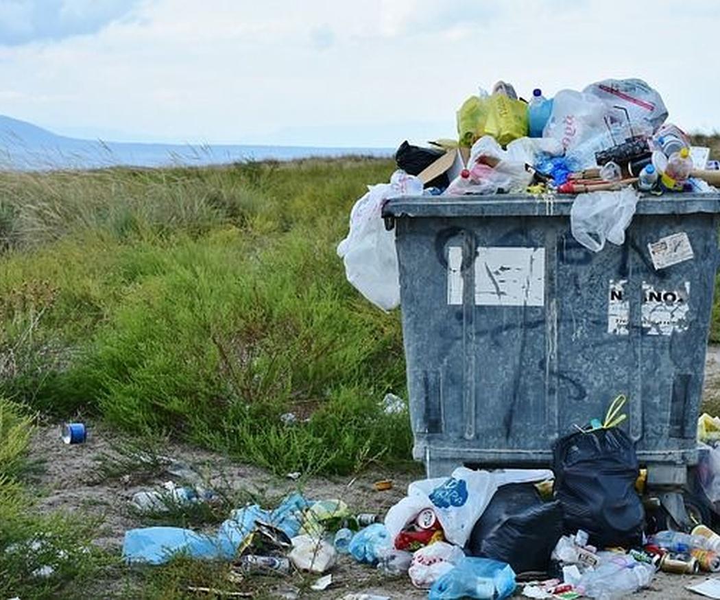 ¿Por qué reciclar papel y cartón?