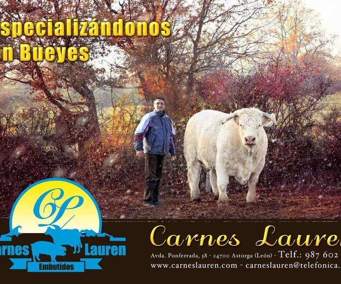 Carne de buey: Catálogo de Carnes Lauren