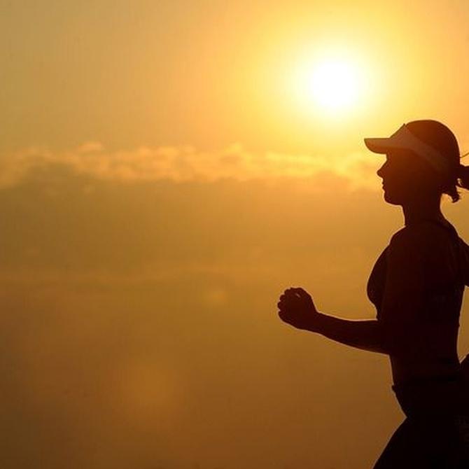 Beneficios de hacer deporte habitualmente