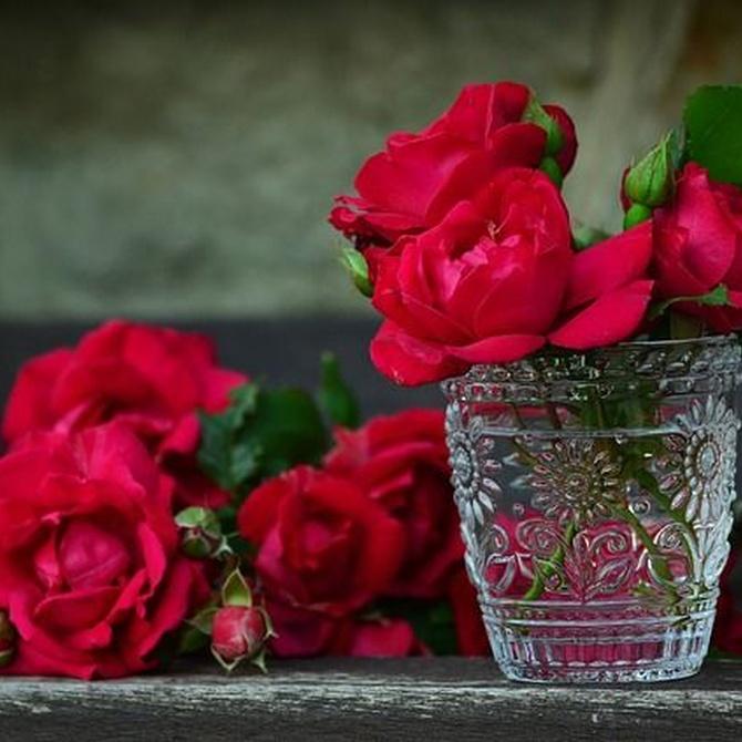 ¿De dónde viene la tradición de regalar flores? ¿Qué es la floriografía?