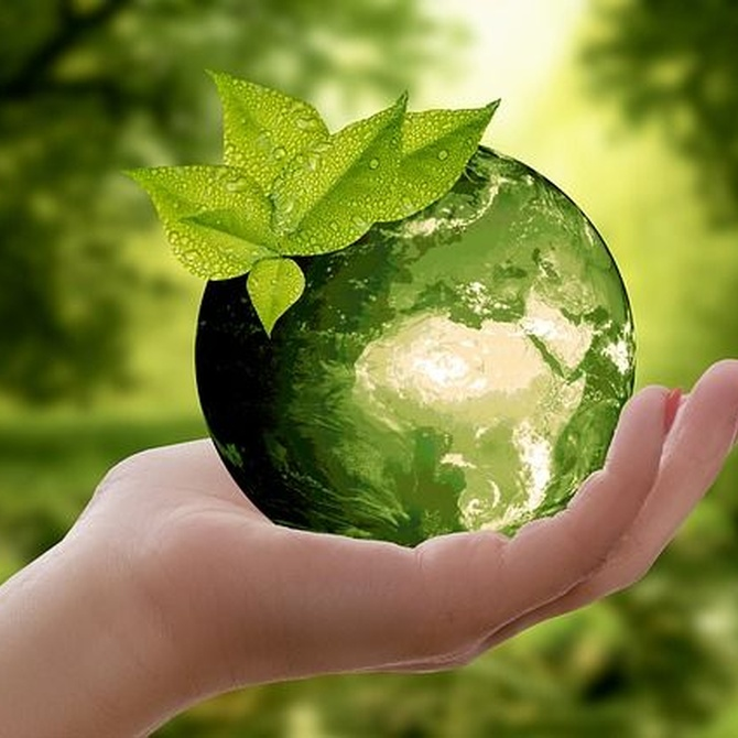Consejos para cuidar el medioambiente