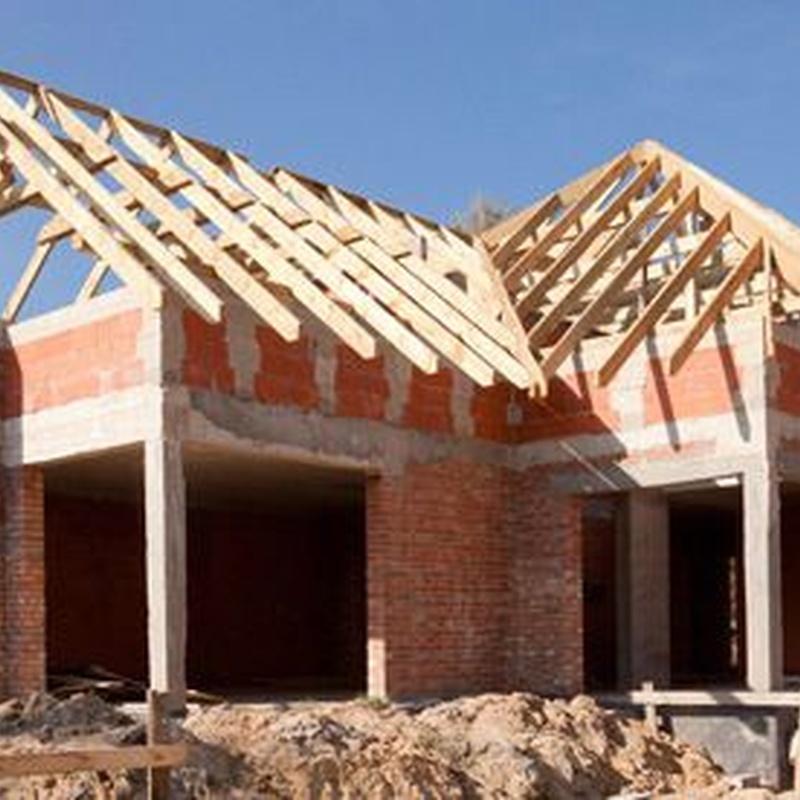 Construcción de obra nueva: Servicios de Mamut Grup