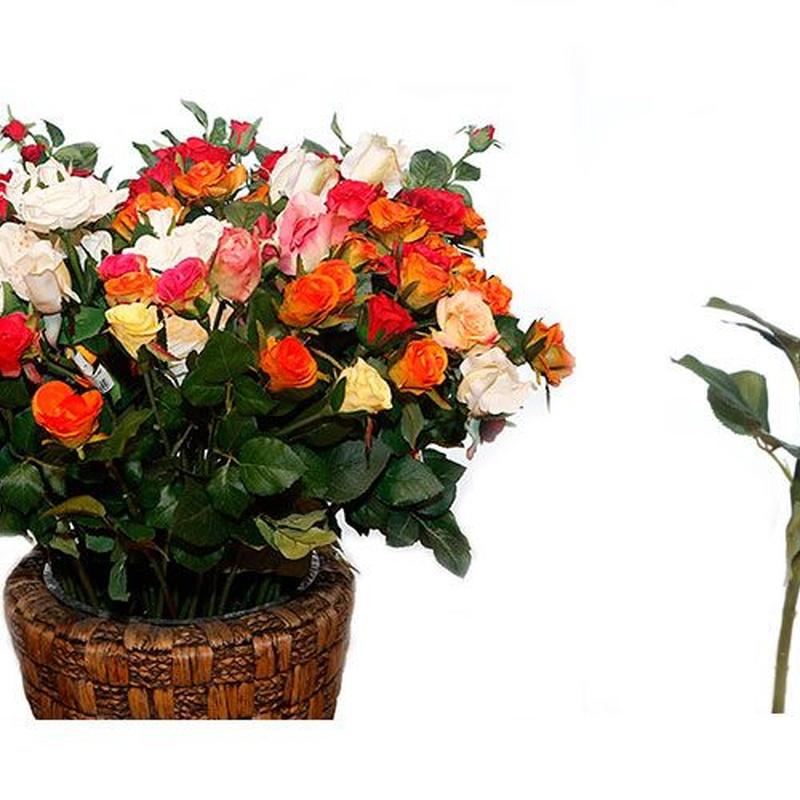 Flores secas y artificiales: Productos de FLORISTERÍA CASA BASUSTA