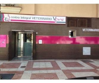 Ecografía veterinaria : Servicios de Centro Integral Veterinario VPRO