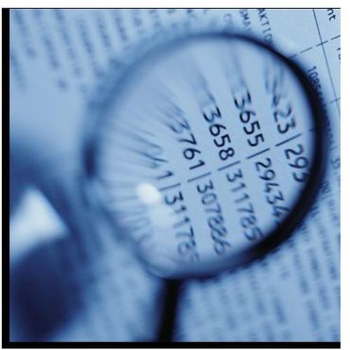Detective's Scarf, servicios de indagación de información concreta para empresas y particulares