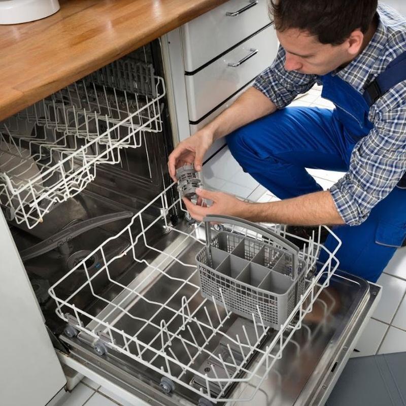Reparación de lavavajillas: Servicios de Briotec