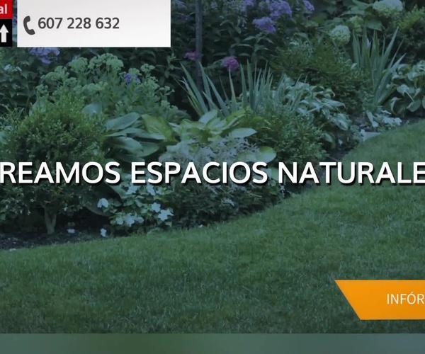 Diseño de jardines en Altea | Integral Services Altea