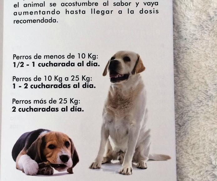 Plaque Off: Productos y Servicios de Narval Mascotas