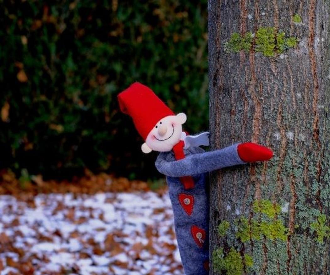 Consejos para el mantenimiento del jardín en invierno