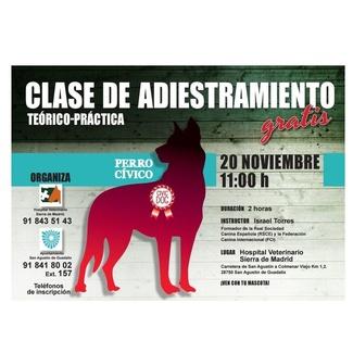 CLASES DE ADIESTRAMIENTO GRATIS