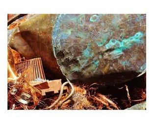 Recogida de residuos peligrosos y maderas