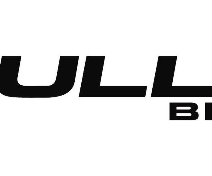 Bulls Bike