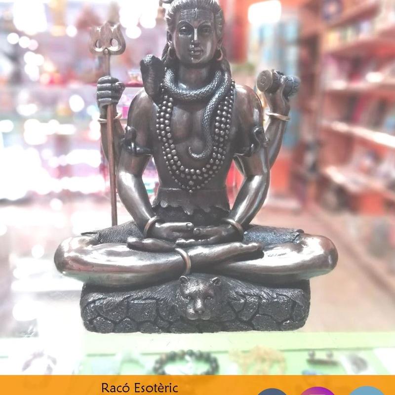 Figura Shiva: Cursos y productos de Racó Esoteric Font de mi Salut