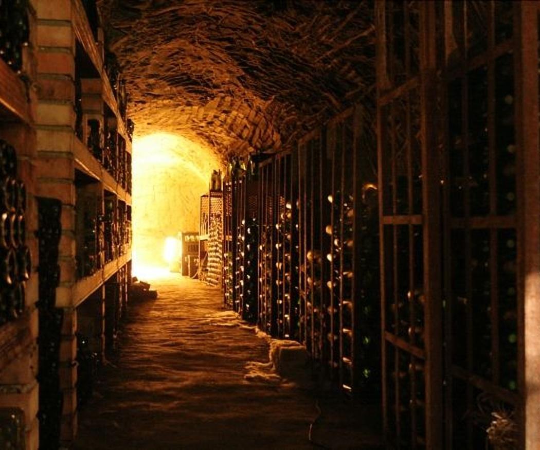 La temperatura idónea para cada vino