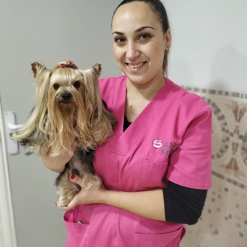 Peluquería canina y felina: Nuestros Servicios de Clínica Veterinaria Sant Marc