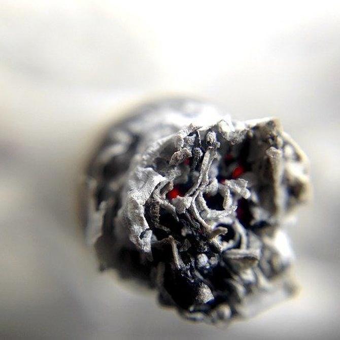 El origen del tabaco