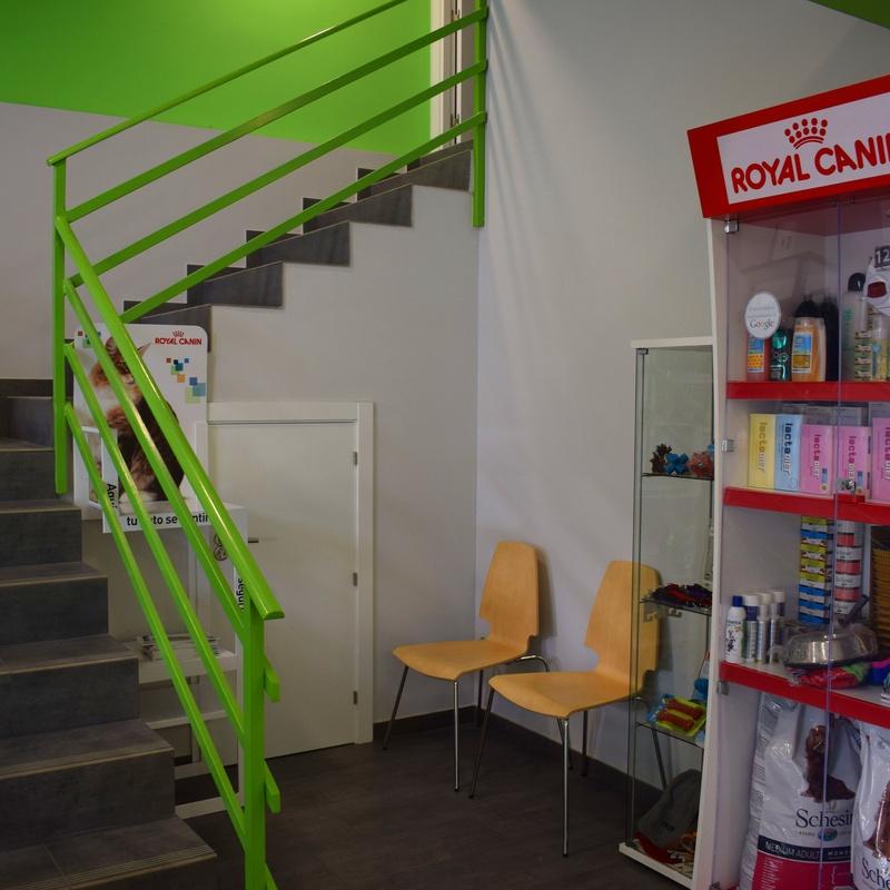 Tienda Especializada: Servicios veterinarios de Clínica Veterinaria Parque de los Estados