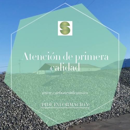 Carbón y leña en Ponferrada | Silvano