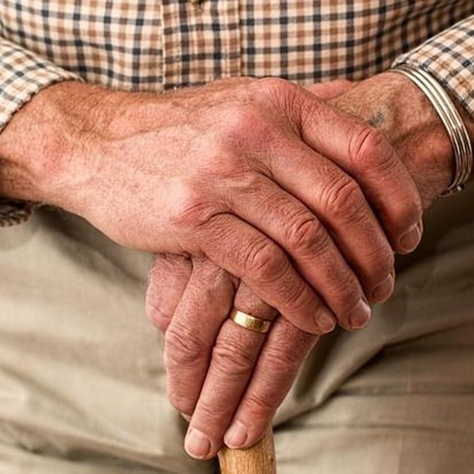 Yoga para personas mayores, ¿qué beneficios existen?