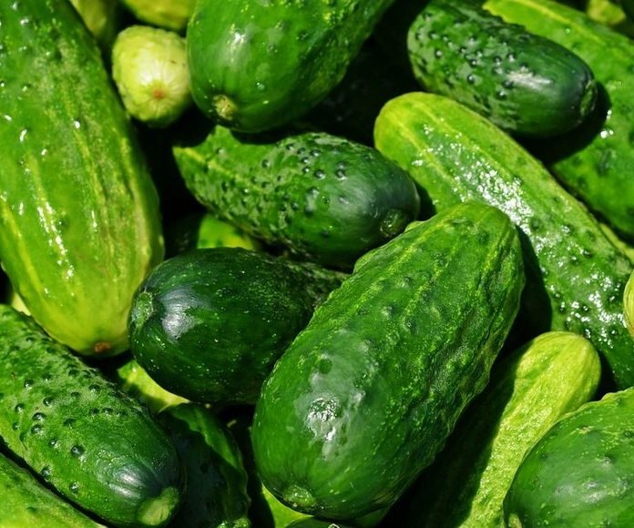Pepino: Productos de La Huerta de Leo