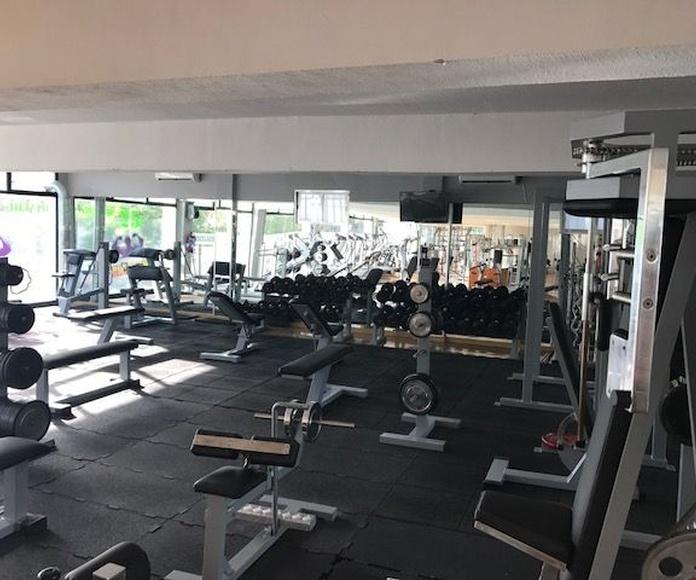 Musculación: Clases de Ultra Gym