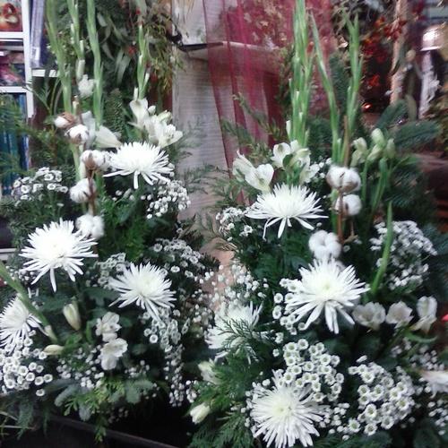 Visita tu tienda de flores