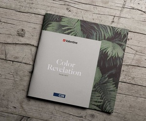 CARTA COLOR REVELATION 2017