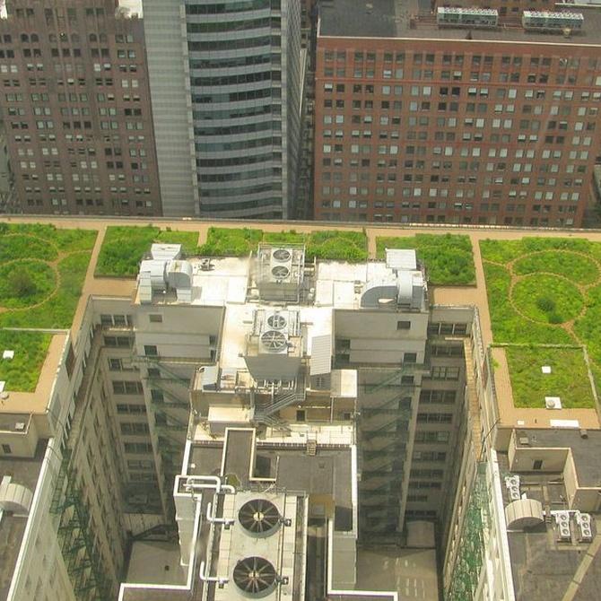 Techos verdes, ayudando a respirar a las ciudades