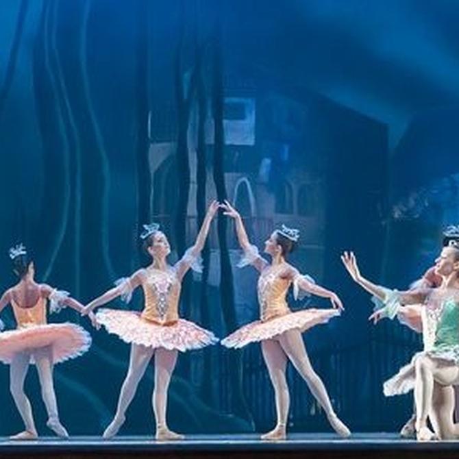 Algunas características del ballet clásico