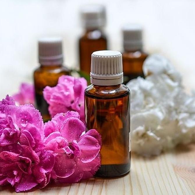 Las propiedades del aceite de rosa mosqueta