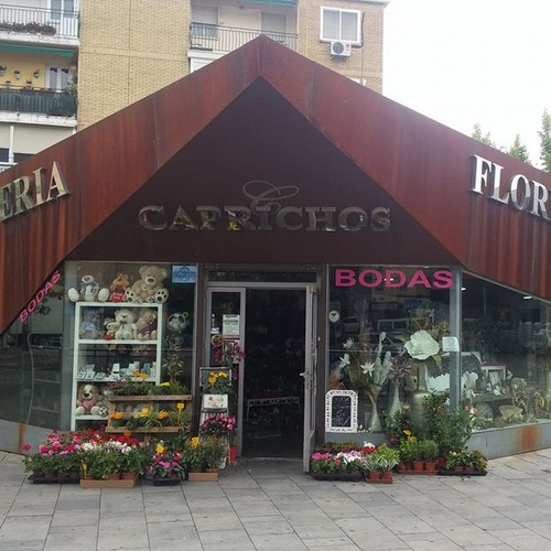 Floristería en Parla