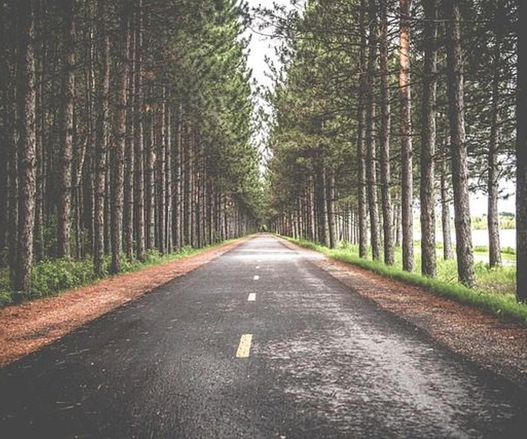 Tipos de pavimentos