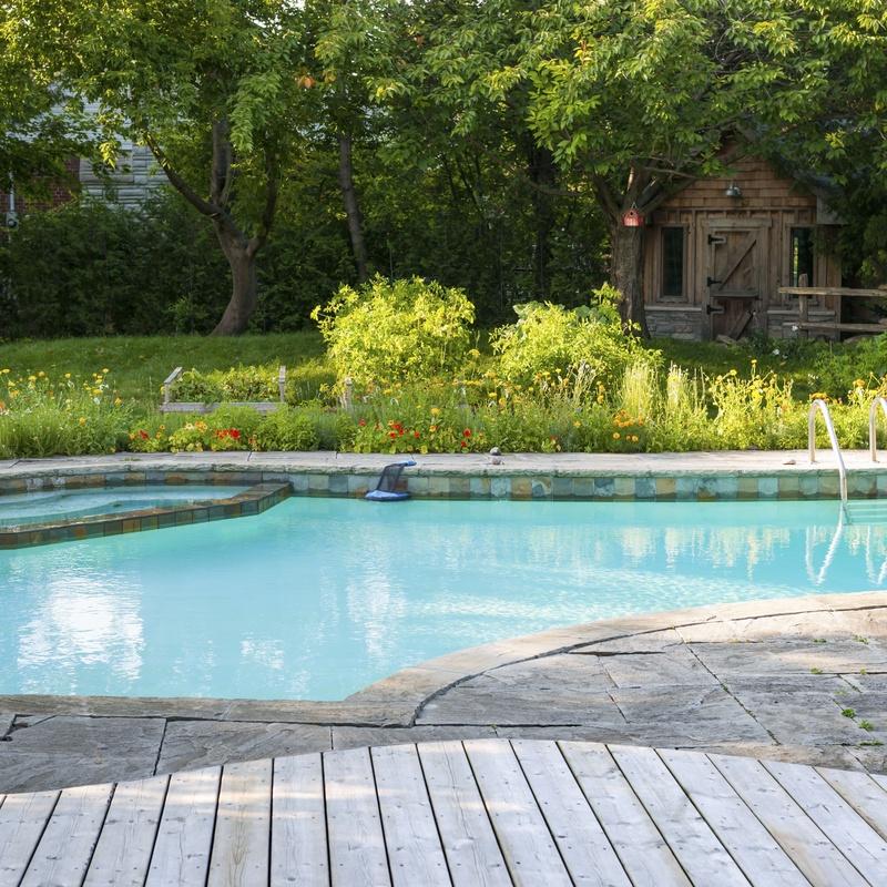 Mantenimiento de piscinas: Servicios de Jardinería Monte de Oro