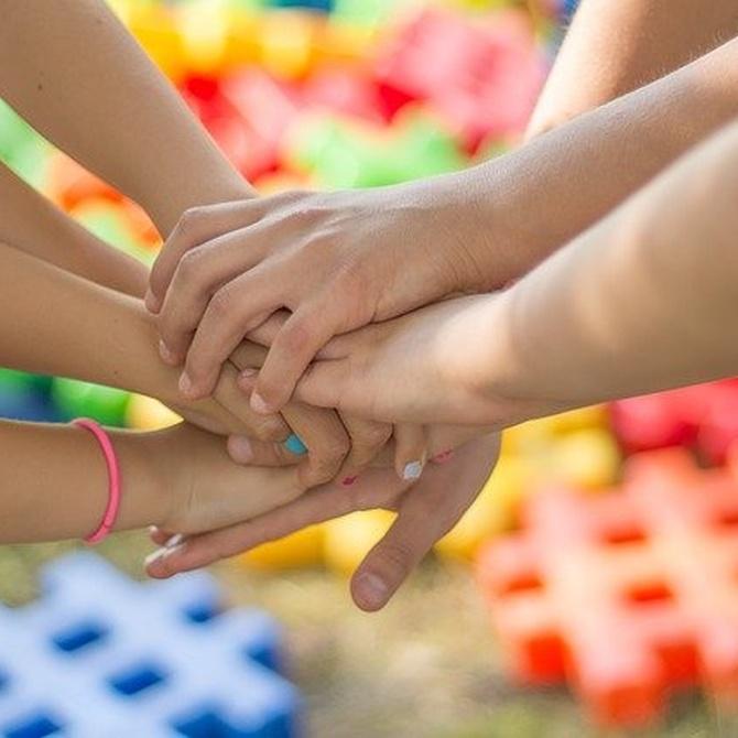 Descubre los beneficios de jugar en un parque de bolas para los niños