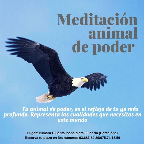 Meditación animal de poder: Terapias y actividades de Kumara Centro Holístico