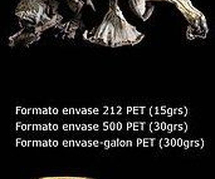 Setas deshidratadas: Nuestros productos de Productos Silvestres Julián Martín