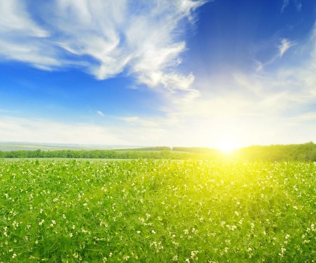 El sol, la lluvia y el viento