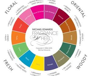 Para elegir un perfume, necesitas de las familias olfativas