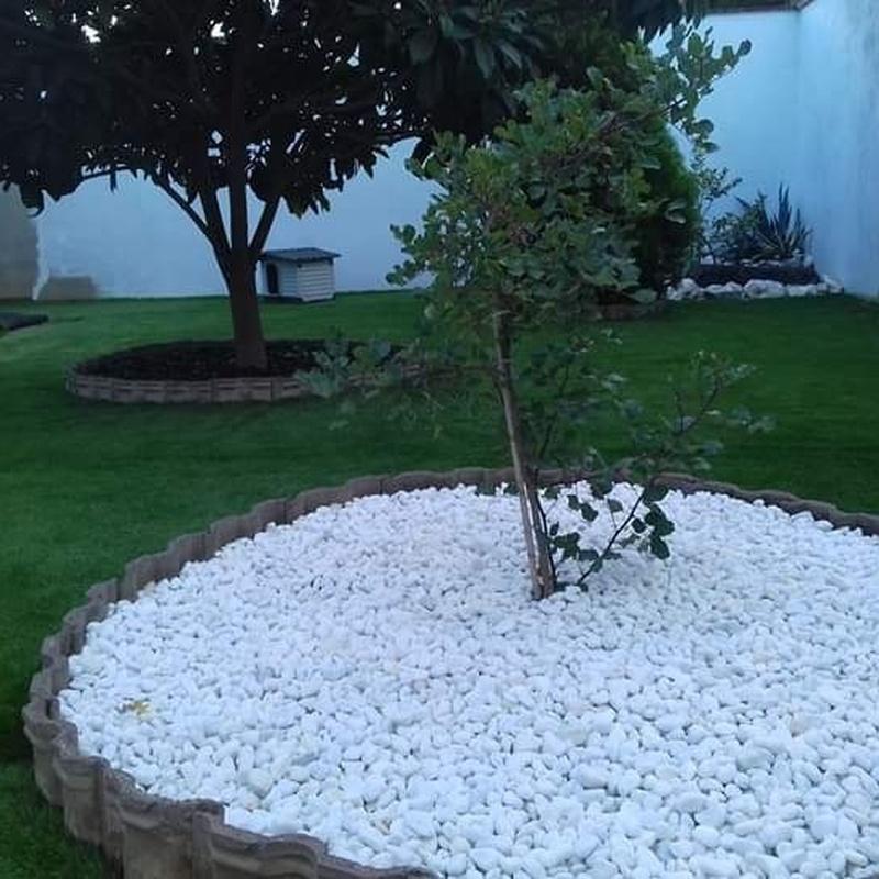 Instalación de césped artificial: ¡Jardinería y mucho más! de SALVADOR SÁNCHEZ DÍAZ