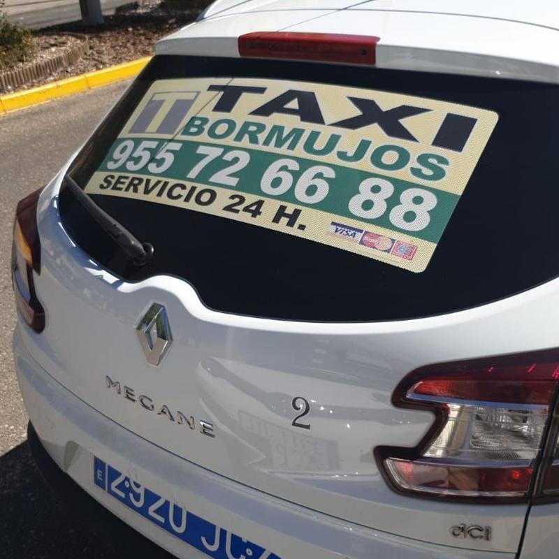 Servicio aeropuertos y estaciones: Servicios de Taxi Bormujos - Minusválidos -