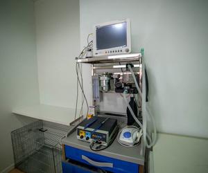 Centro veterinario en El Ejido