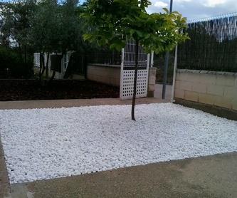 Mantenimientos de jardines: ¡Jardinería y mucho más! de SalvaJardin