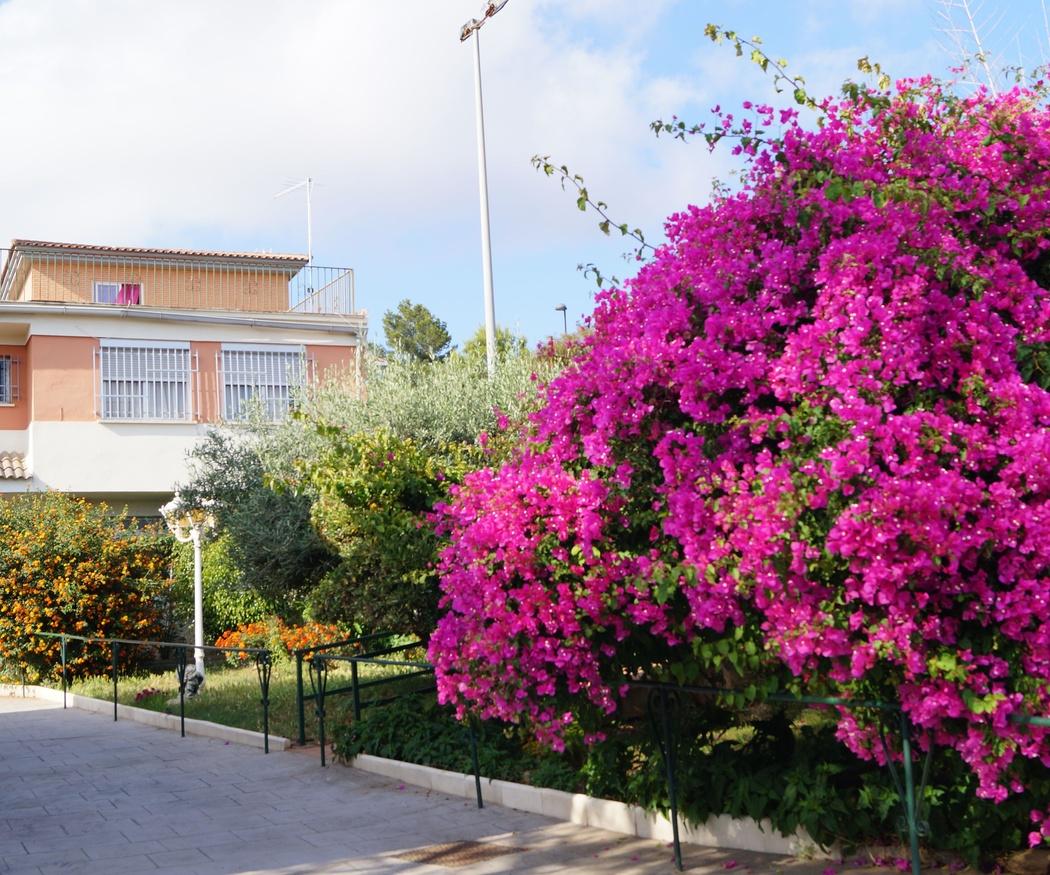 Centro de Mayores Ntra. Sra. de La Estrella